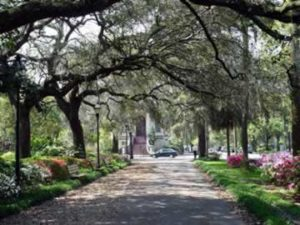 My beautiful home town, Savannah, Georgia